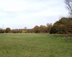 Upminster countryside